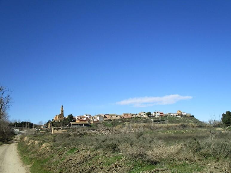 Santalecina