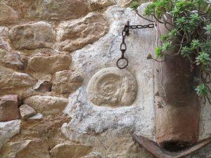 Baldellou. Un fósil gasterópodo en la fachada