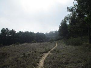 Santa Ana. Senda camino Catillonroy