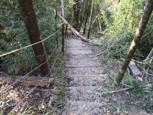 Barranco de Gabasa. Escaleras