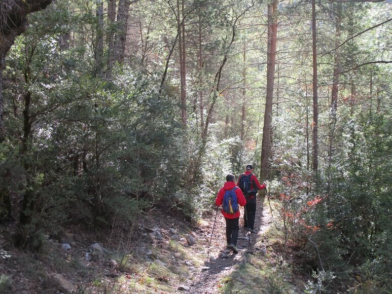 En la senda, camino de la Fuente y el Chorro de Fornos