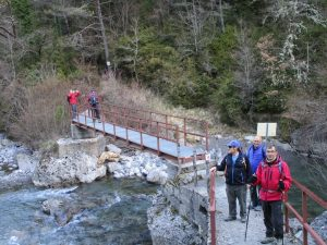 Puente sobre el río Irués