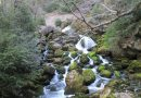 Ruta entre Badaín y Laspuña