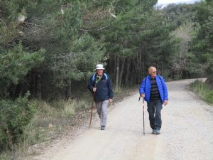 Camino del Mas de Quintillá