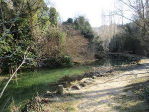 Barranco de Gabasa. Balsa de aguas claras
