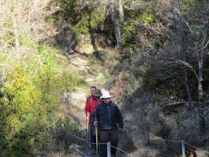 Camino de la Fuente y del Chorro de Fornos