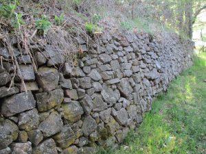 Camino de Escané. Viejos tapiales