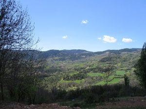 Valle de Castanesa. Exuberante vegetación