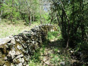 Bibiles. Antiguos caminos bien conservados