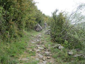 Subida a la Sierra de Bonés