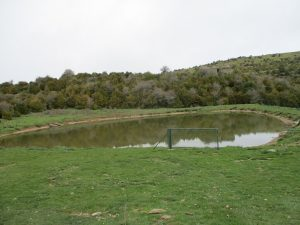 Sierra de Bonés. Balsa para el ganado