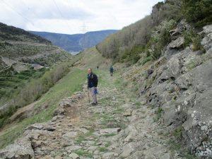 Antigua vía pecuaria, bajando al mesón Nuevo