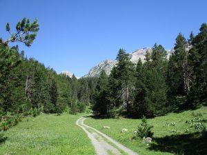 Camino de la Cabaña del Turmo