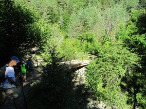 Llegando al puente de la saca