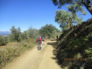 Camino de Buera