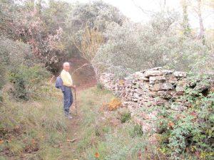 Antiguo camino de subida a Muro de Roda