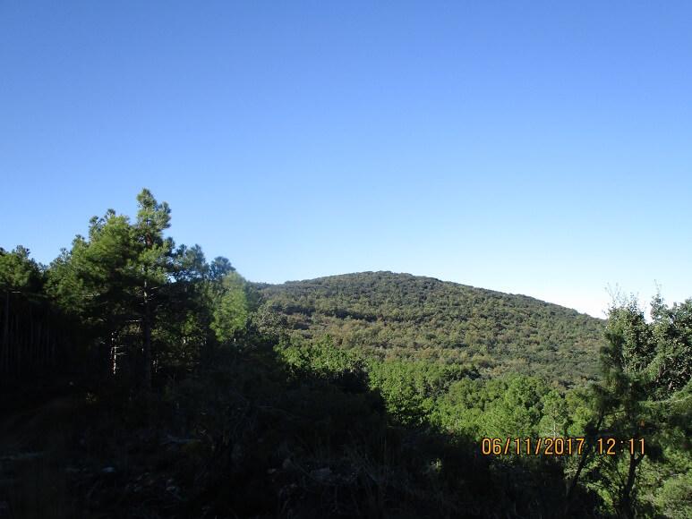 Pico La Cogulla