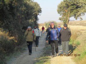 Camino de Rocafort y Pelegriñón