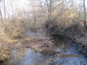 Río Guatizalema, en Salillas