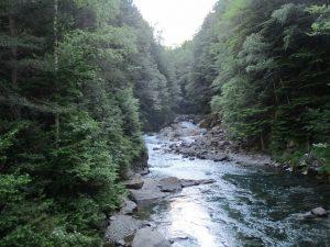 Río Ara. Valle de Bujaruelo