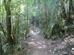 Camino de Turieto