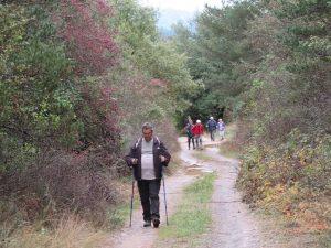 Camino de Albella