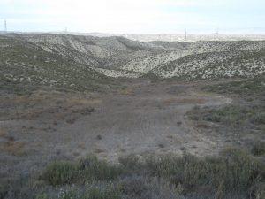 Cadrete. Campo de cultivo