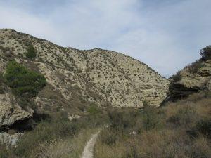 Cadrete. Barranco de Las Almunias