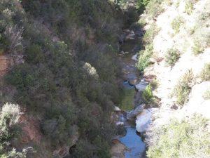 Río Formiga