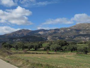 Terrenos de cultivo en Panzano