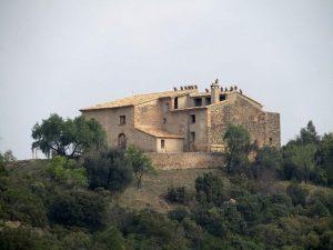 Ermita la Virgen de la Viña. Buitres sobre el tejado