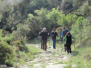 Camino de Agüero