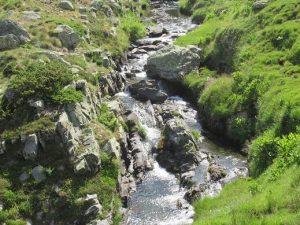 Río Canal Roya