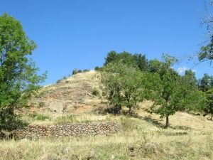 Obís. Antiguos campos de cultivos