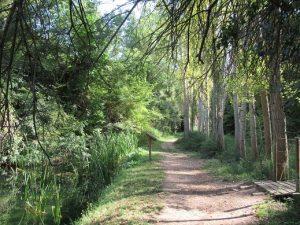 Barranco de Gabasa
