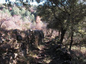 Camino entre La Villa y Solanilla