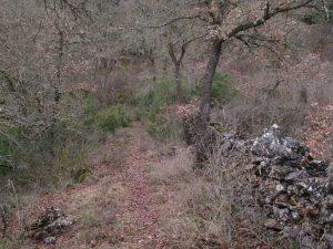 Antiguo camino entre Estopiñán y Estaña