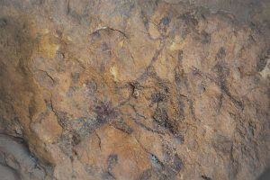 Muriecho. Escenas pictóricas (1)