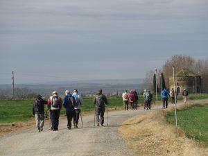 Camino de la ermita de San Bartolomé