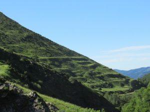 Bancales en el Valle de Castanesa