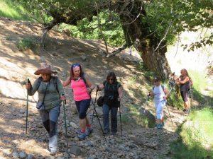 Camino de Cirés. Barranco del Mollás