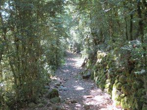 Camino de Cirés