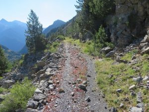 Calzada antiguo camino por la sierra de Espierba
