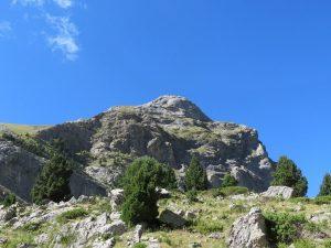 Pico Comodoto