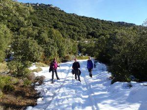 Camino de la ermita a la cabañera