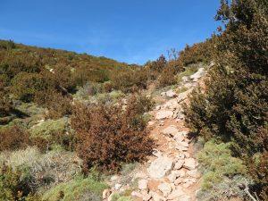Senda de subida al Pico Peiró