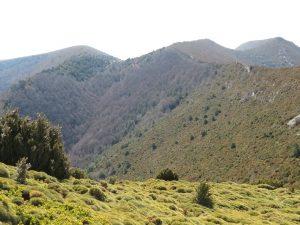 Ladera de subida al Pico Peiró