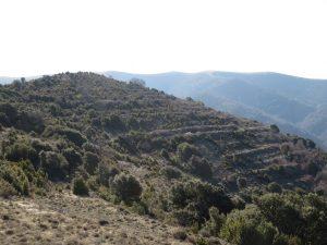 Terrazas de cultivo en las Bordas de Beranuy