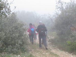 Niebla en el Pico Buñero