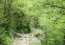 Entre Pardinella y Biascas de Obarra